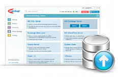 MS Exchange Server backup