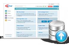 MS SharePoint Server backup